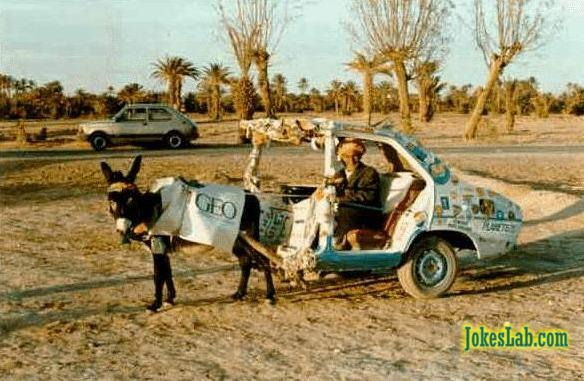 funny car picture, donkey car