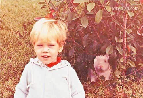 funny photo, pig and child
