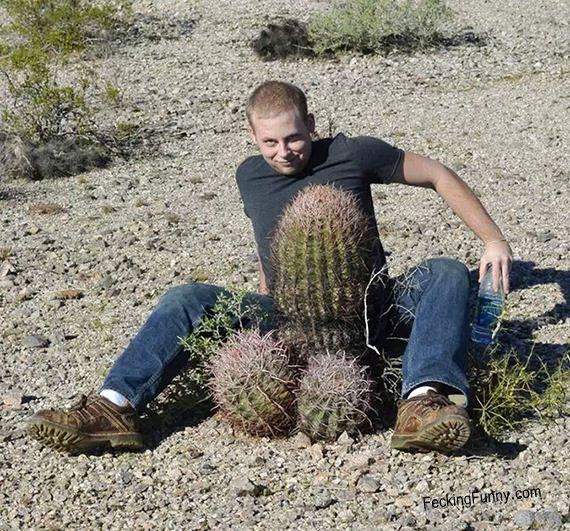 natural-cock-cactus