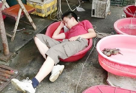 funny-drink-and-sleep in bowl