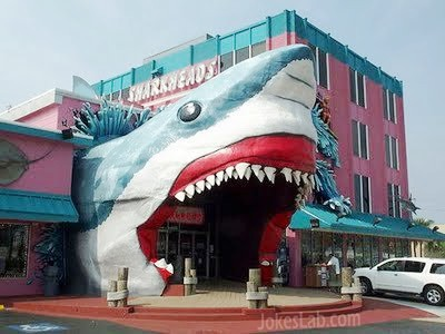 funny-shark-design-building