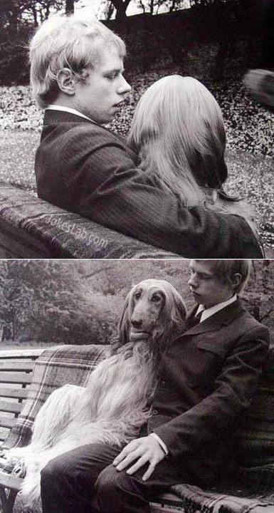 why-dog-is-better-than-girl-friend