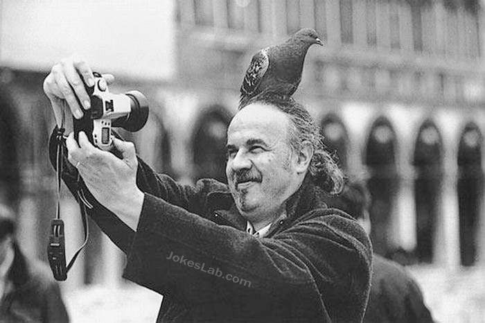 funny-photo-taking-bird-on-head