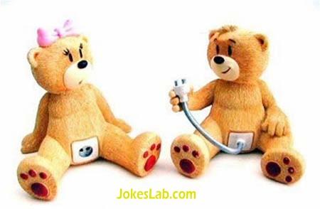 toy sex, funny bear plug