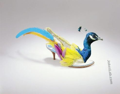 funny peacock sandals