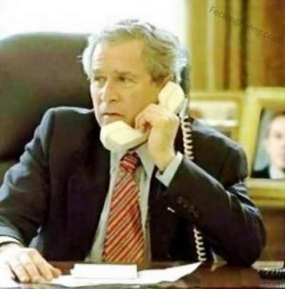 funny-bush-picking-up-phone