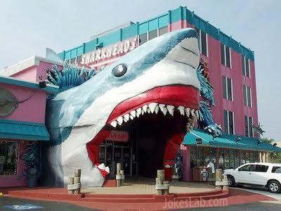 funny-shark-design-building
