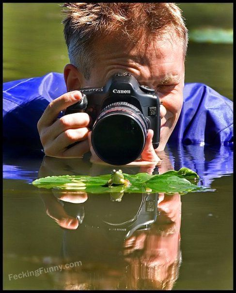 how-to-take-photo-for-frog