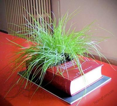 book-planter-smart-plant