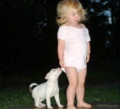 a-dog-named-sex