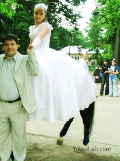 funny-wedding-animal-legs-bride-legs